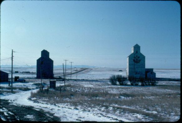 Grain Elevators at Loring, Phillips County, 1984