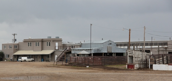 Historic stockyards remain a prominent landmark on the west side of Miles City.