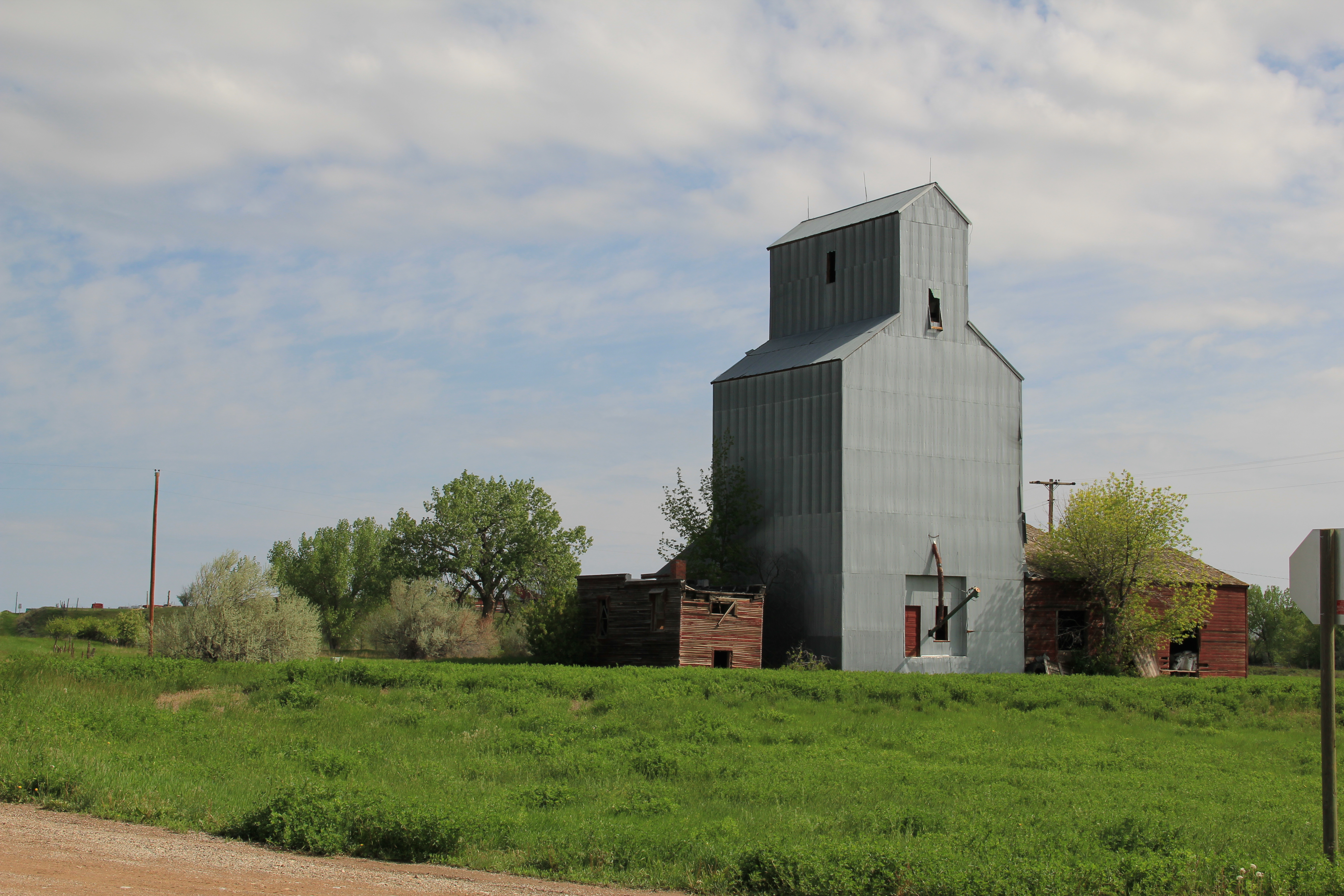 petroleum county singles Not everyone using online dating sites is looking for love  i went google,  county record, then zillow he didn't own this $700000 farm, nor did.