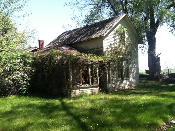 Early dwelling at Hesper Farm, 2011