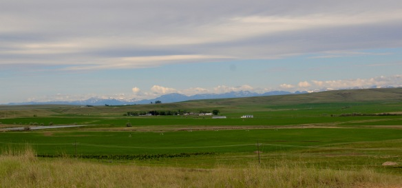 Teton Co Fairfield Greenfields irrigation 1