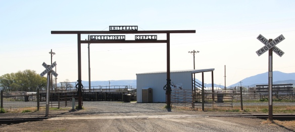 Whitehall rodeo grounds