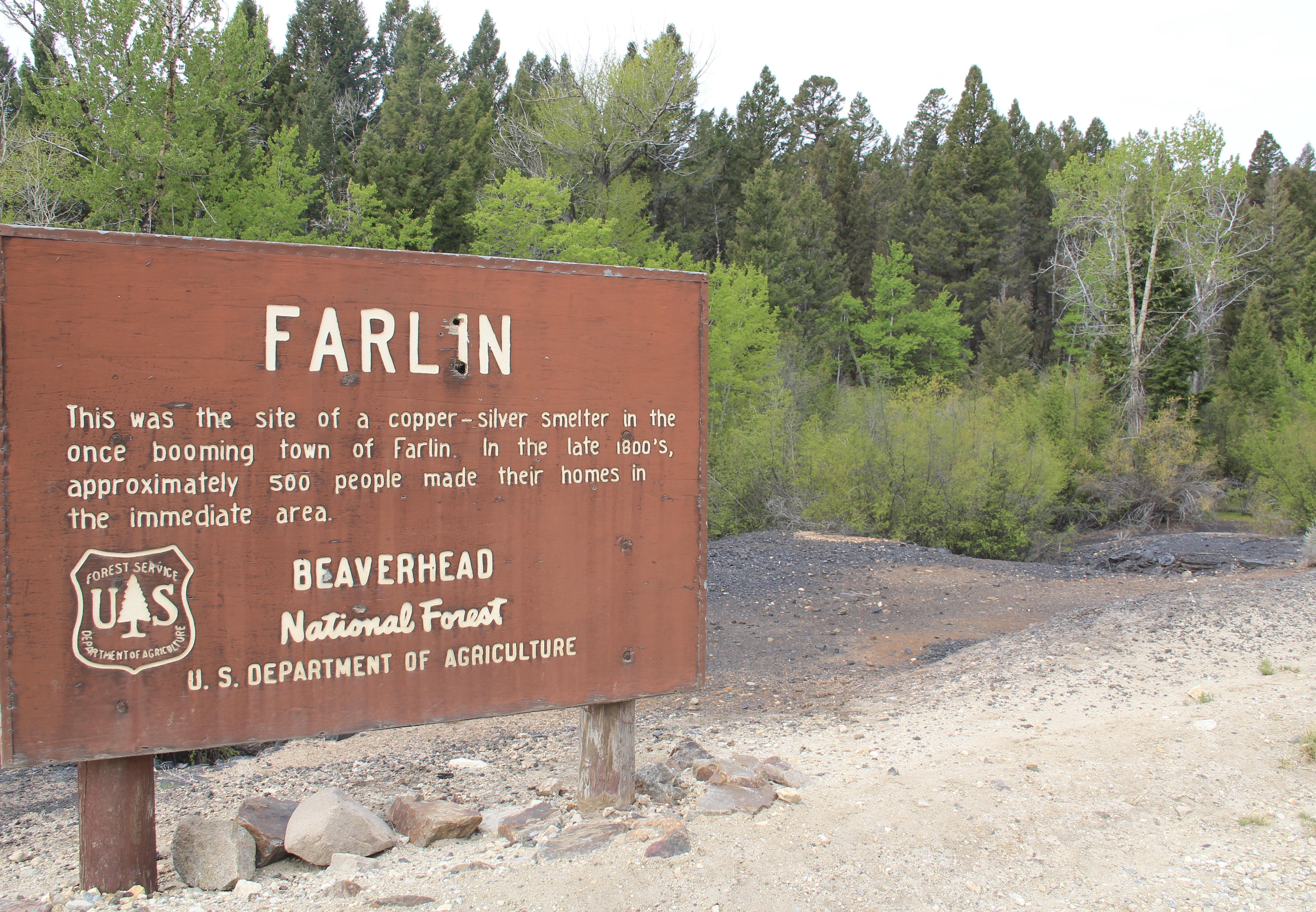 Farlin 5