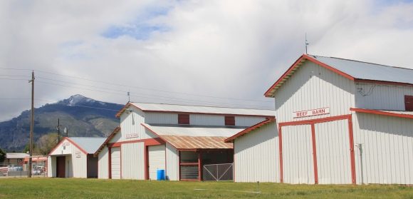 Ravalli County Fairgrounds, Hamilton 2