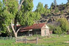 Golden Valley Co Ryegate Simms-Garfield Ranch NR 5