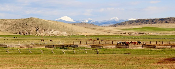 Tash Ranch 4, 1200 Hwy 278, Dillon, NR