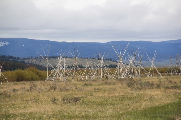 Beaverhead Co, Big Hole Battlefield 9