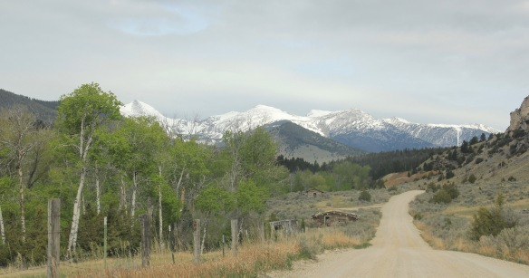 Birch Creek Road 2