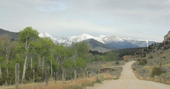 Birch Creek Road 2