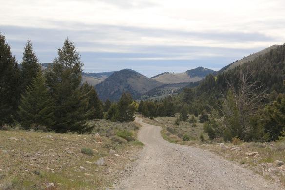 Canyon Creek Rd 2