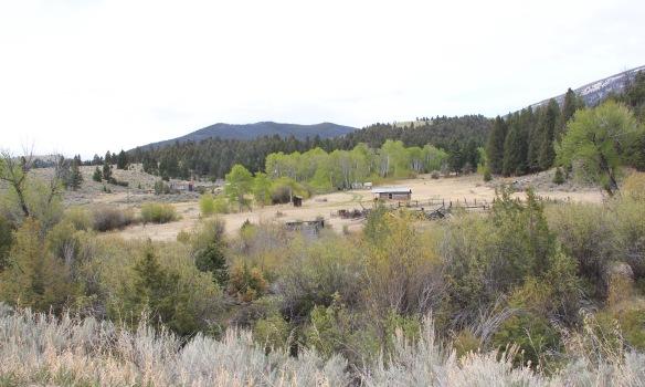 Sheep Creek homestead, Birch Cr Rd