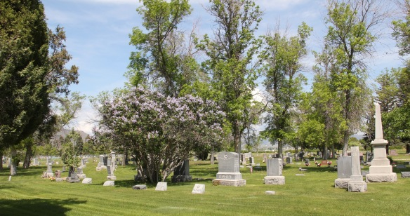 MT Lewis and Clark County Helena Odd Fellows Cemetery 6